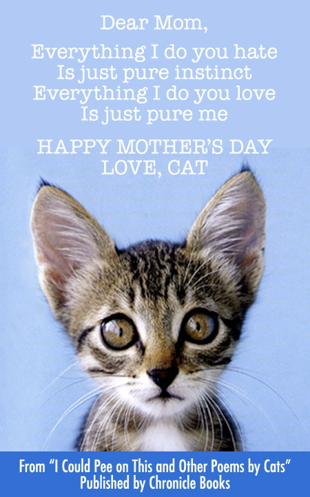 2bfac2f2624bd6f7d57e83ee96ecd7e5--mothers-day-cards-mothers-love